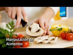art6-Batch#7430-kwd3- formación seguridad alimentaria